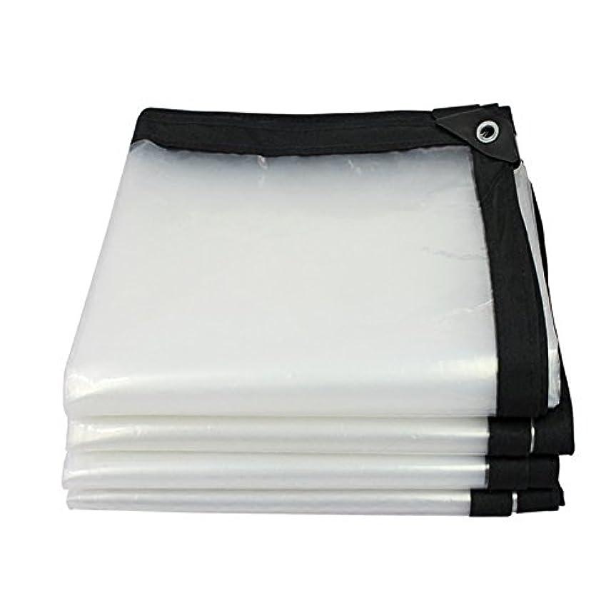 ガチョウハロウィンクラッシュSHYPwM 厚手透明防水シート防水布防水プラスチック防水シート家庭用装飾防塵布 (サイズ さいず : 2 mx 3 m)