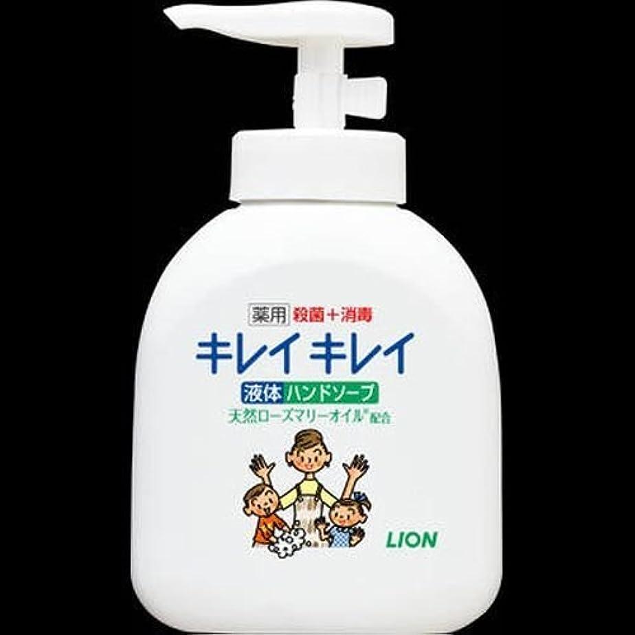 バージン慢性的おもてなしライオン キレイキレイ 薬用液体ハンドソープ 本体 250ml ×2セット