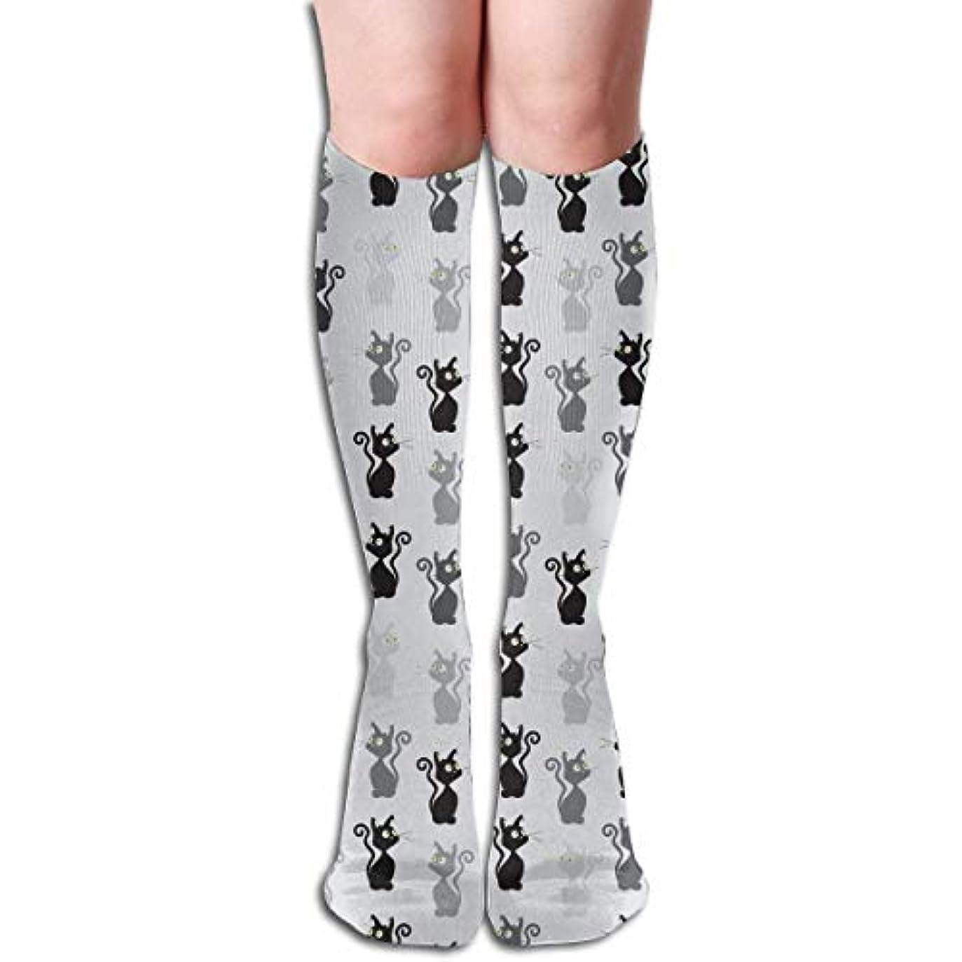 朝の体操をする君主名義でQrriyアスレチックソックスの猫のパターン3 D圧縮ソックス男性のための長い靴下