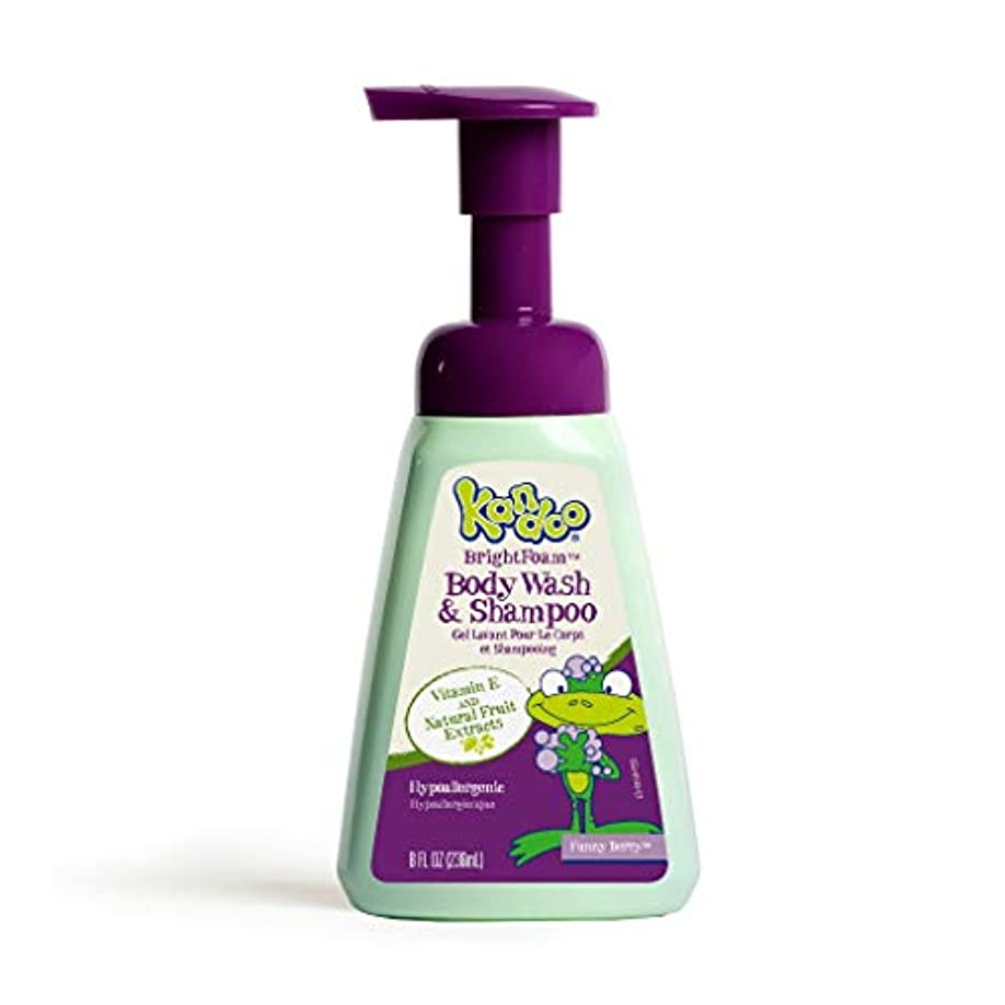 にんじん製作読むKandoo BrightFoam Body Wash, Funny Berry Scent, 8.4 Fluid Ounce by Kandoo