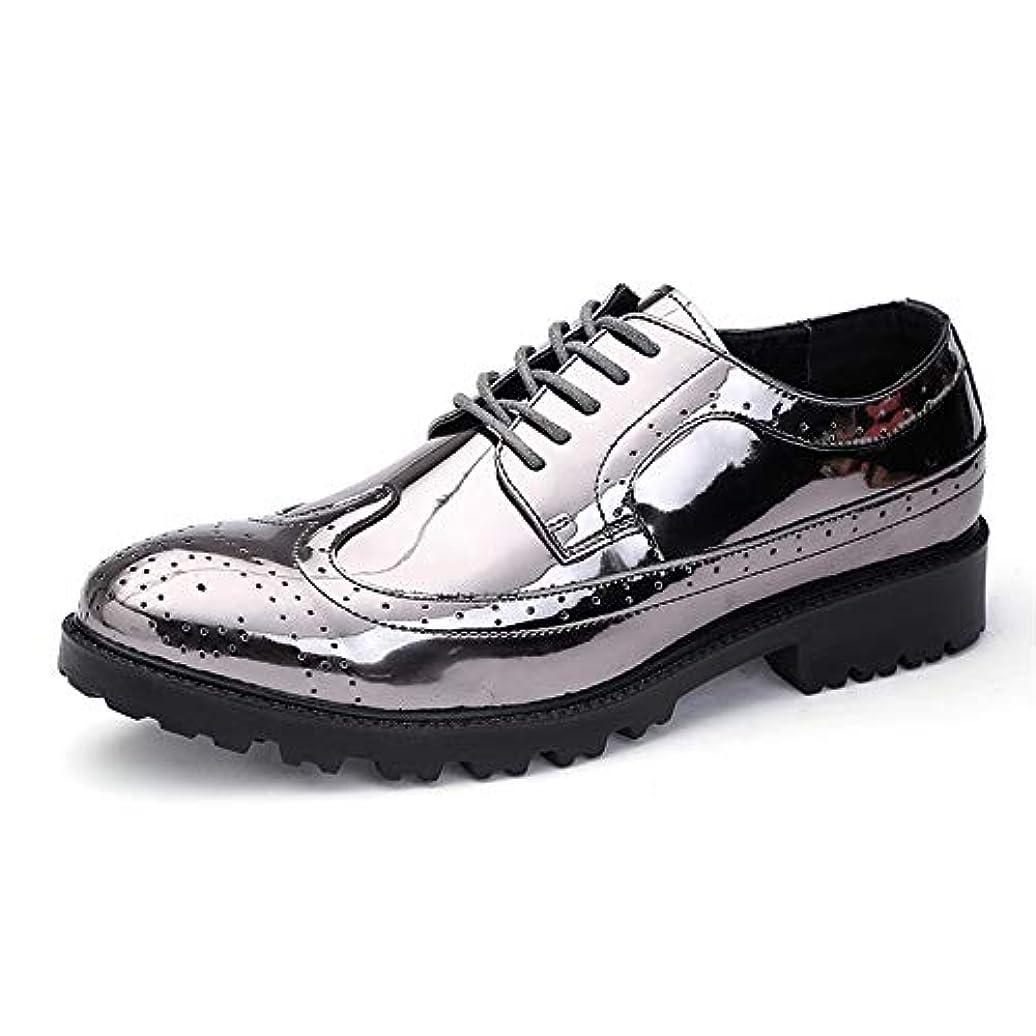 所持仲介者醜いSunny&Baby メンズファッショナブルシャイニーPUレザーVampレースアップ通気性の靴 耐摩耗性 (Color : Silver, サイズ : 24 CM)