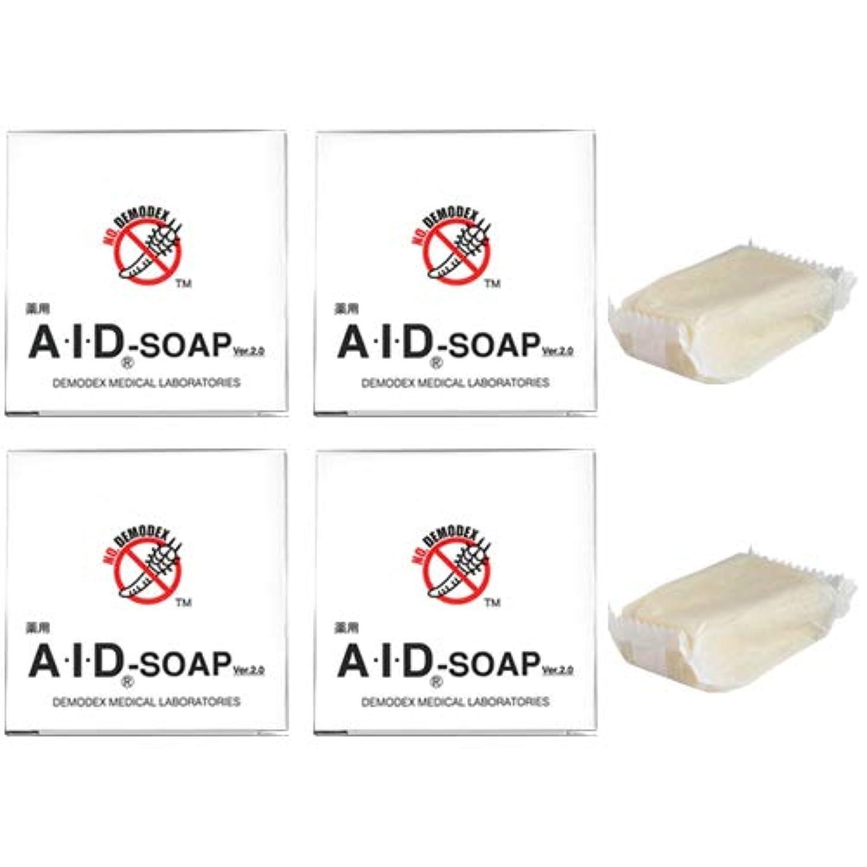 哲学的ニンニク教える薬用AIDソープ (40g×4、30g×2 計6個セット 総内容量:220g)
