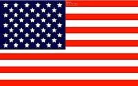 ミニチュア外国旗DXデラックス(14×21cm)アメリカ