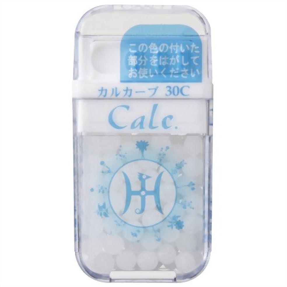図硬い奨励ホメオパシージャパンレメディー Calc.  カルカーブ 30C (大ビン)