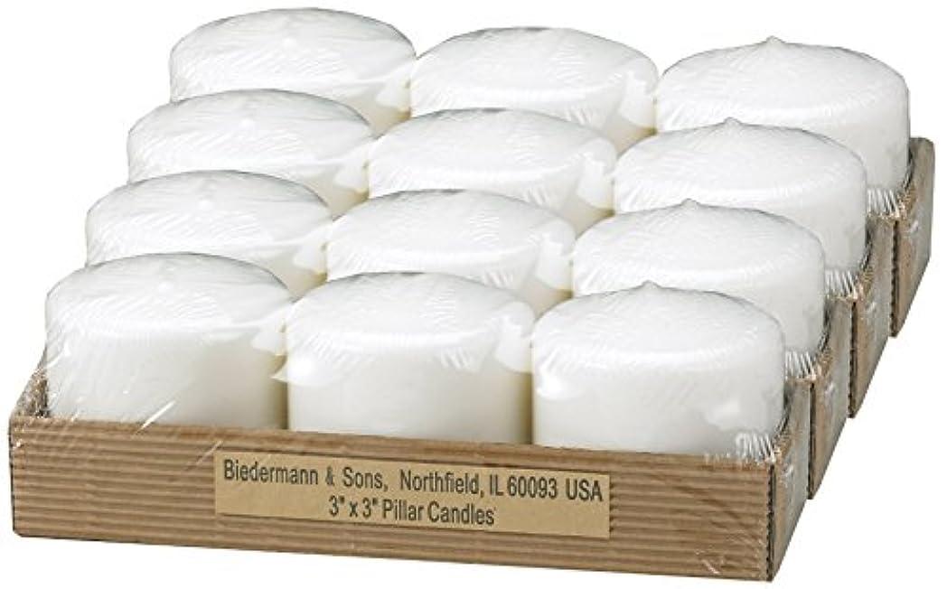 細断大洪水特権的ビーダーマン&サンズC303WT小さな白いピラーキャンドル