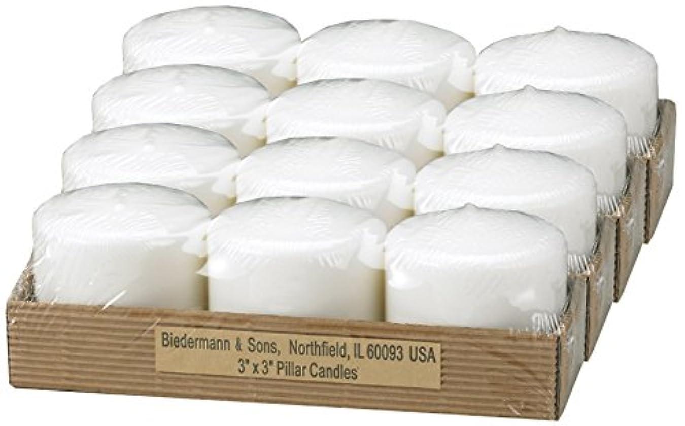 癒す壊す盲目ビーダーマン&サンズC303WT小さな白いピラーキャンドル