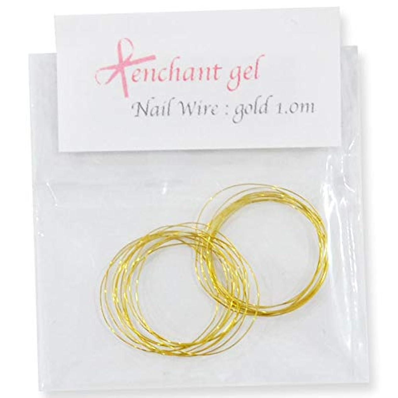 雄弁なファッション深めるネイルワイヤー 太さ0.2mm 長さ1.0m ゴールド エンチャントジェル