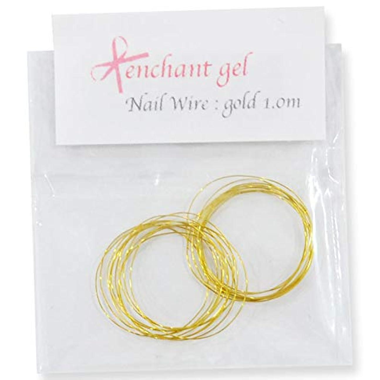 間違いなくタイヤ怠感ネイルワイヤー 太さ0.2mm 長さ1.0m ゴールド エンチャントジェル