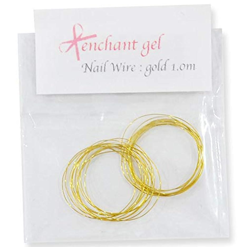 艶調整する六分儀ネイルワイヤー 太さ0.2mm 長さ1.0m ゴールド エンチャントジェル