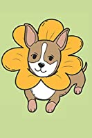 My Cute Chihuahua: Journal for Chihuahua lovers and owners