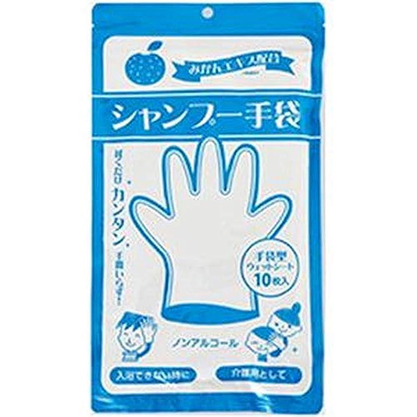 逆説通路誇大妄想== まとめ == 本田洋行/シャンプー手袋 / 1パック - 10枚 - - ×5セット -
