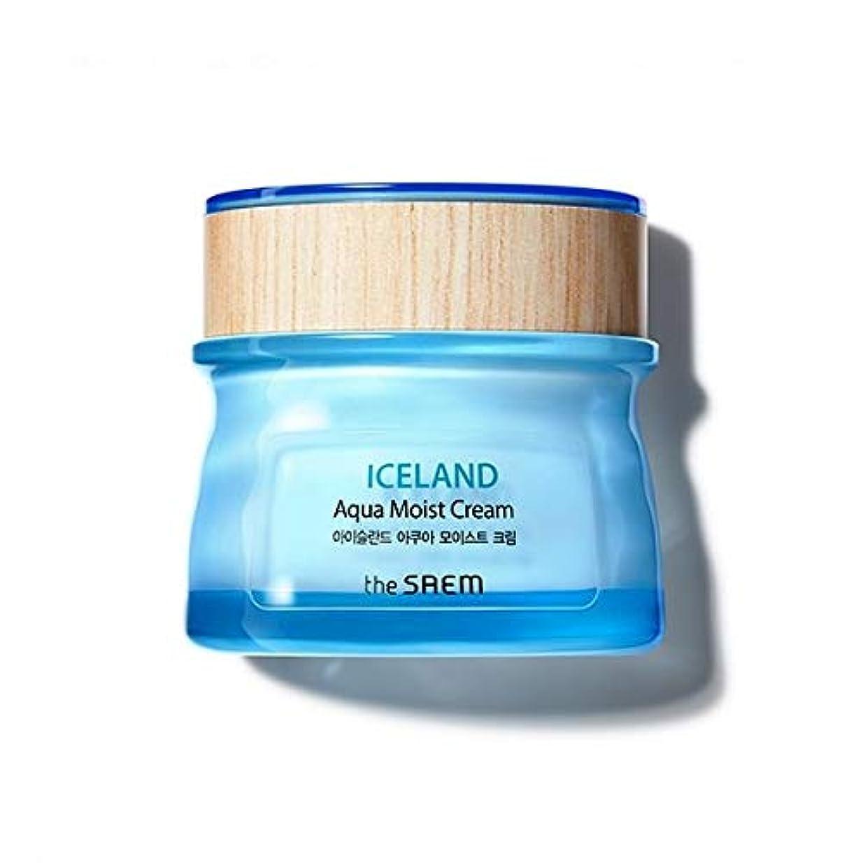 安全名前を作るポスト印象派The saem Iceland Apua Moist Cream ザセム アイスランド アクア モイスト クリーム 60ml [並行輸入品]
