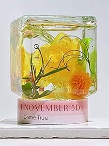 母の日 お誕生日 ハーバリウム Lucy Come True お誕生日 母の日 開運 風水 プレゼント プリザーブドフラワー クリスマス フラワーアレンジメント