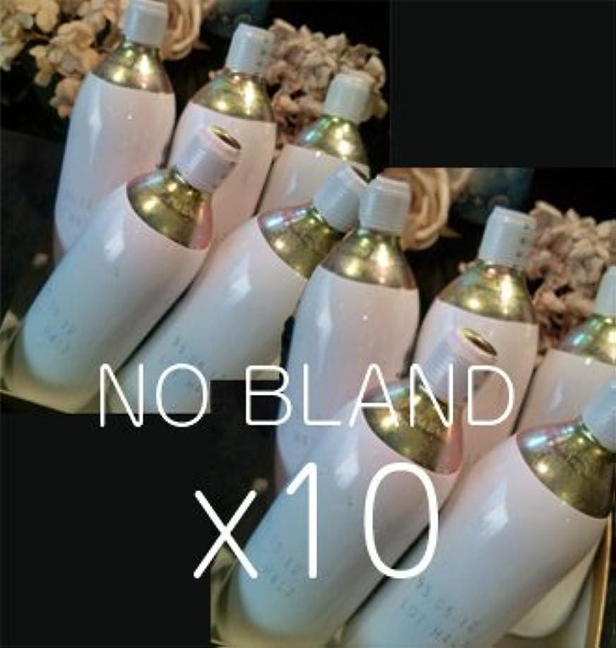 幻影ランドマーク過度の純正対応 炭酸ガス カートリッジ 74g×10本