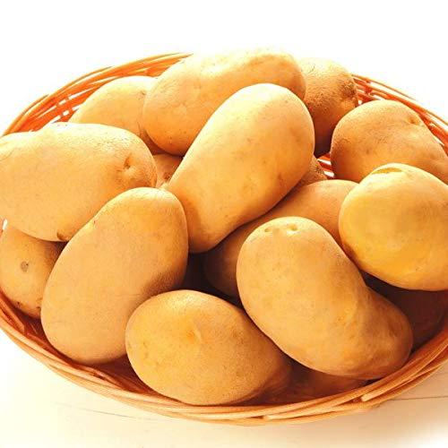 国華園 北海道産 メークイン 20kg1箱(10kg×2箱) じゃがいも 野菜