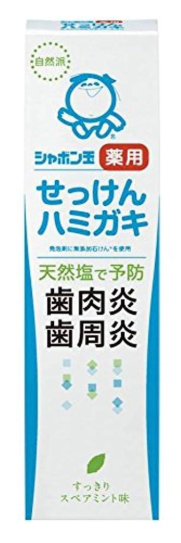 ガラガラ健康サポート薬用せっけんハミガキ 80g