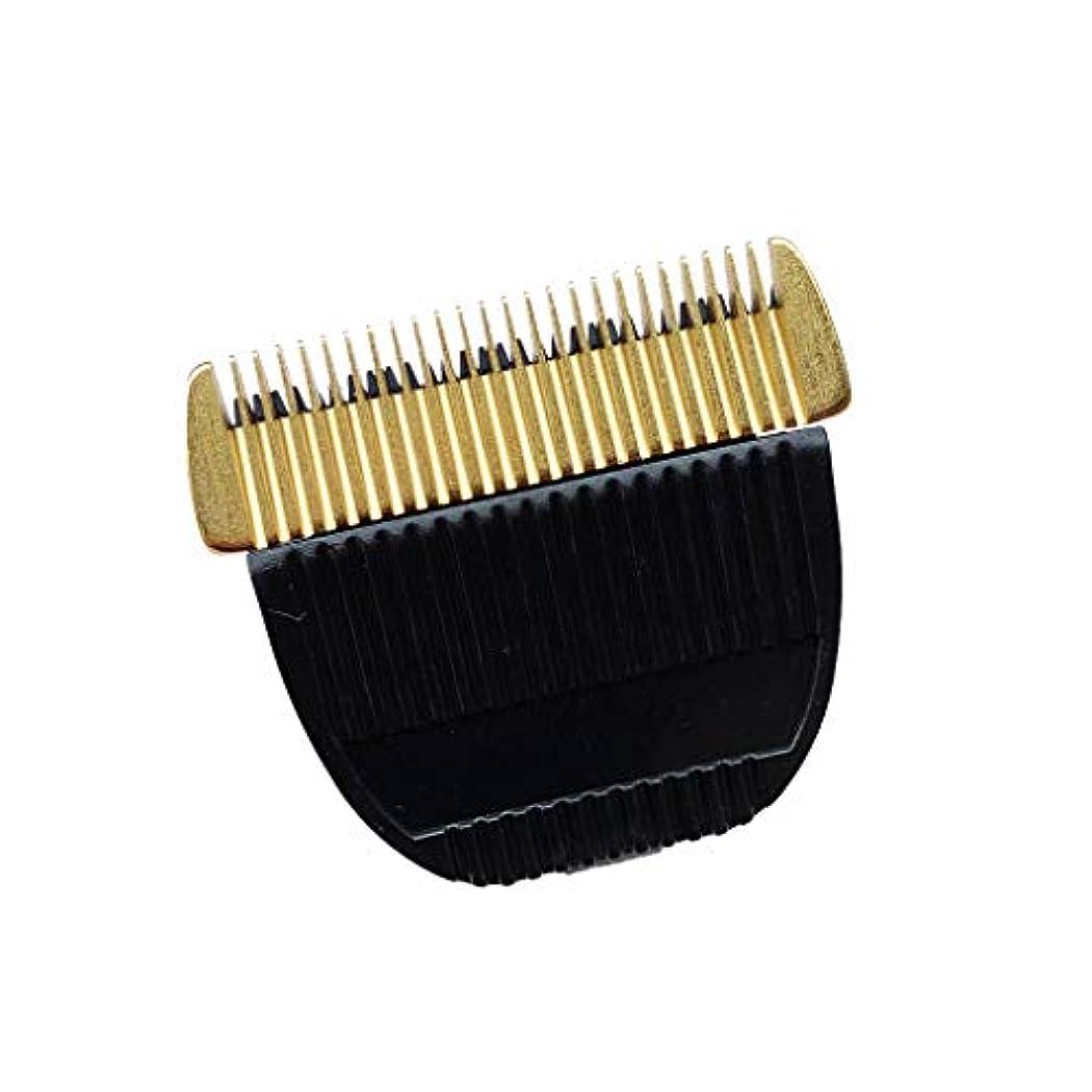 ER−GP80 1610 1611 1511 153 154 160 VG101ホストの交換部品にはカミソリヘッドが適している