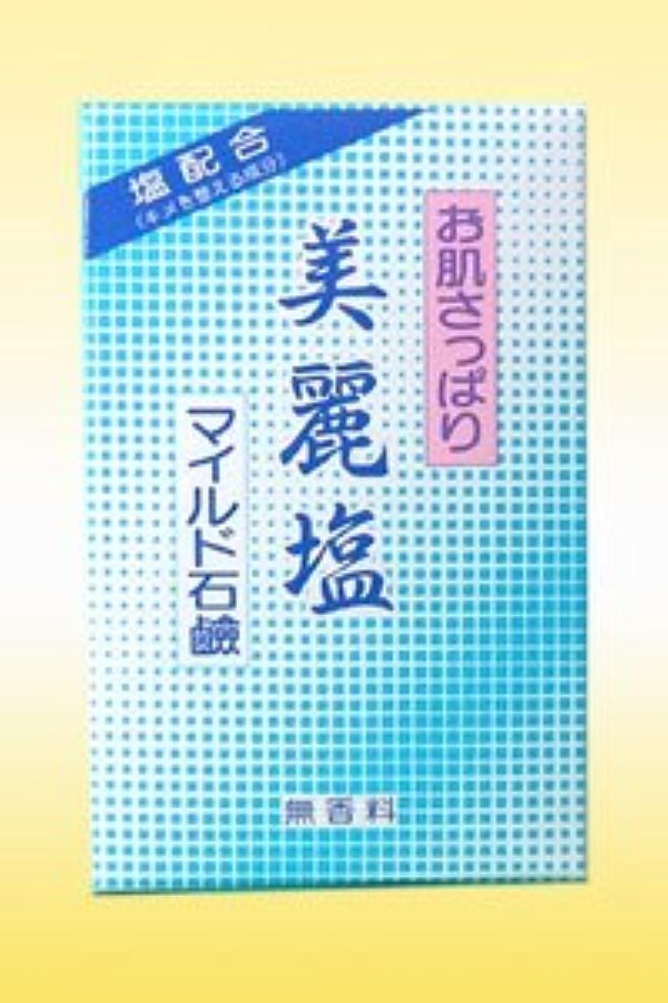 壊滅的なブランデーパプアニューギニアニード美麗塩マイルド石鹸(95g)キメを整える成分:塩配合の無香料石鹸