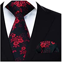 HISDERN Wedding Ties for Men Cravat Jacquard Luxury Floral Printed Tie + Handkerchief Elegant Men's Paidley Necktie & Pocket Square Set