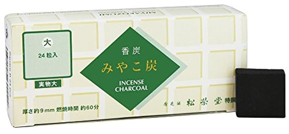 公平結晶襟Shoyeido - 正方形木炭 タイプB - 24個セット
