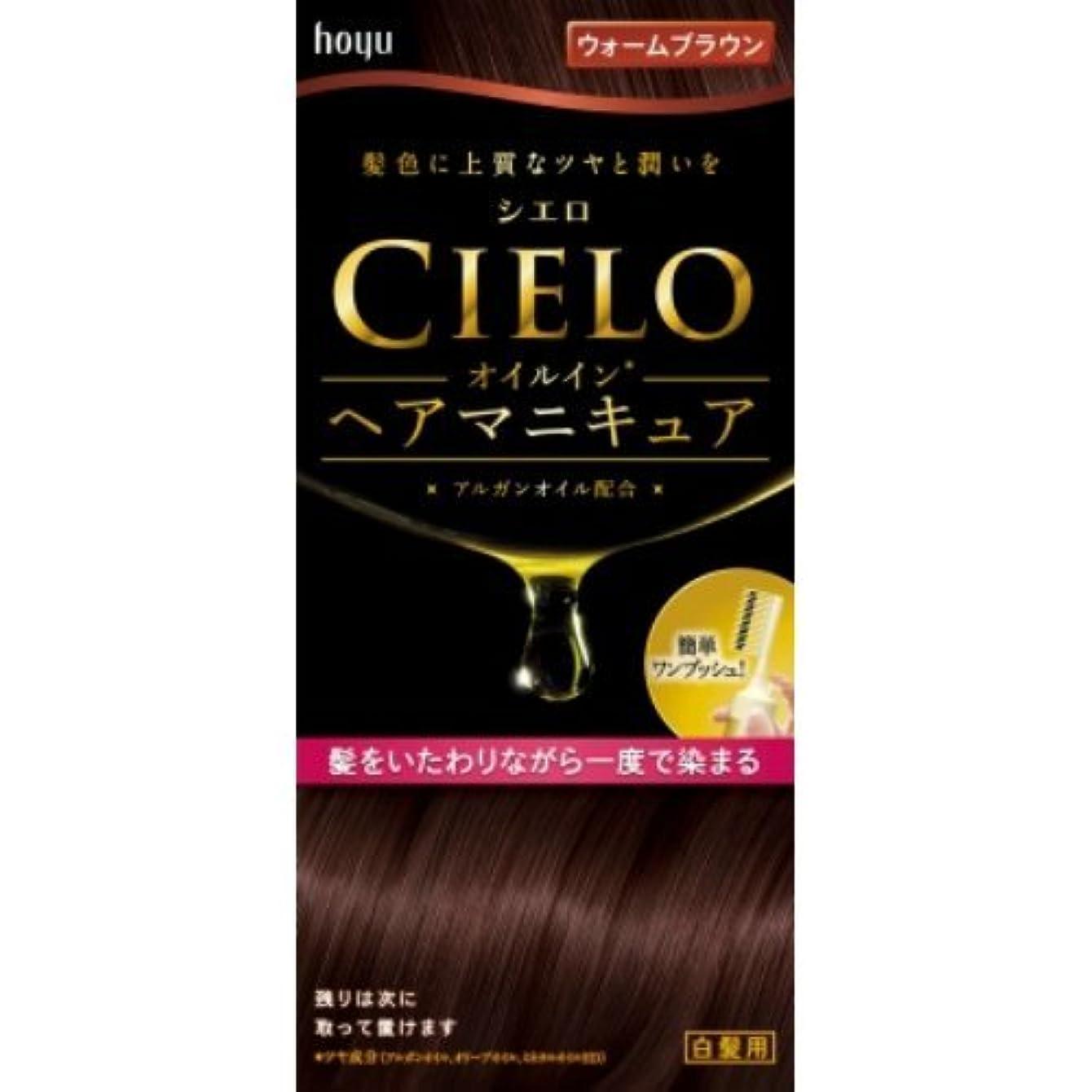 ハブブ適用する大声でシエロ オイルインヘアマニキュア ウォームブラウン × 3個セット
