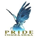 【Amazon.co.jp限定】PRIDE(初回生産限定)(紙ジャケット仕様)(CD2枚組)(デカジャケット付)