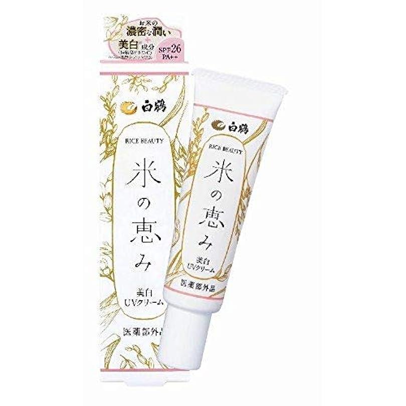 氷シビックギネス白鶴 ライスビューティー 米の恵み 美白UVクリーム 30g SPF26/PA++ (日焼け止め/医薬部外品)