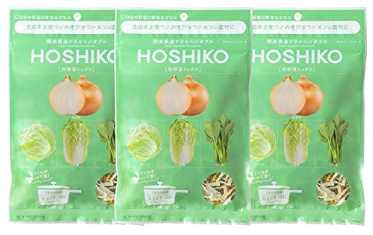 どう?中級日曜日HOSHIKO 和野菜ミックス 90g (30g × 3袋) セット 具材 スープ 炒めもの 熊本産 塩分不使用 無添加 ブドウ糖不使用
