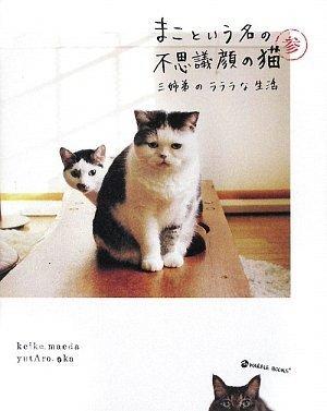 まこという名の不思議顔の猫 参 (MARBLE BOOKS)