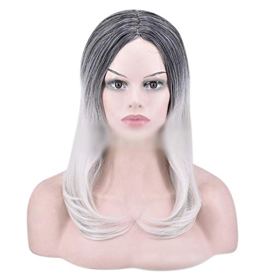によって著者一般YOUQIU 女性のかつらのために自然なダークルーツロングオンブルグレーウィッグストレート髪の合成かつら (色 : グレー)