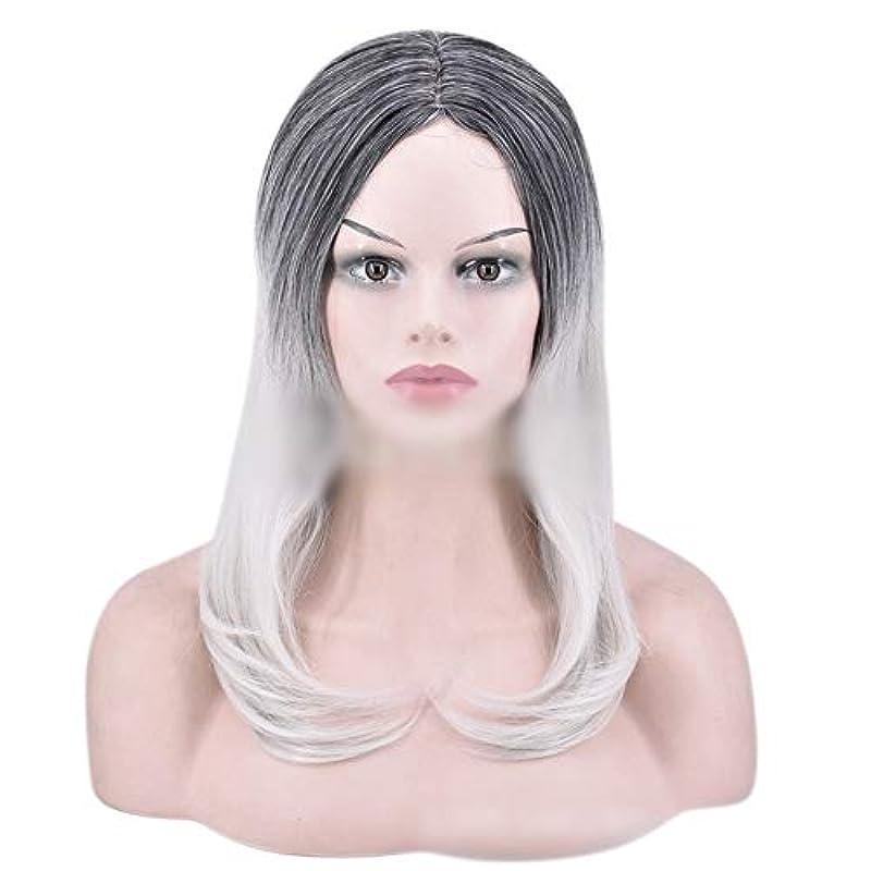 絶対の下向き聖人YOUQIU 女性のかつらのために自然なダークルーツロングオンブルグレーウィッグストレート髪の合成かつら (色 : グレー)