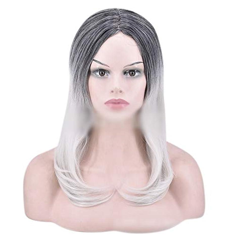 広々とした世界記録のギネスブック楽なYOUQIU 女性のかつらのために自然なダークルーツロングオンブルグレーウィッグストレート髪の合成かつら (色 : グレー)