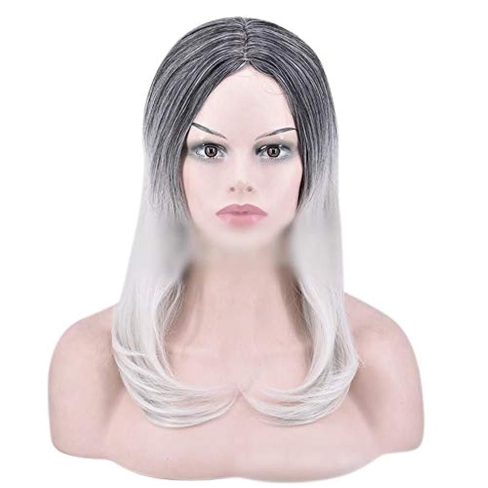 投資側溝失望させるYOUQIU 女性のかつらのために自然なダークルーツロングオンブルグレーウィッグストレート髪の合成かつら (色 : グレー)