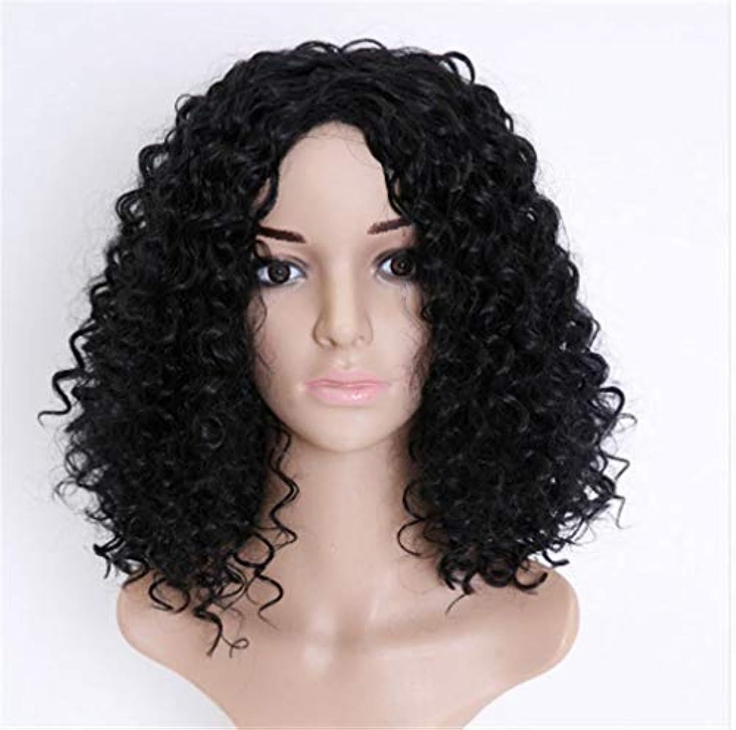 SRY-Wigファッション ファッション長い短い髪のかつらかつらヨーロッパやアメリカの短い巻き毛のかつら女性のアフリカの少量の爆発ヘッド化学繊維かつら (Color : Black)