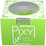 PIXY 組織培養水草アルテルナンテラ・カージナリス (無農薬 無菌 無害虫)