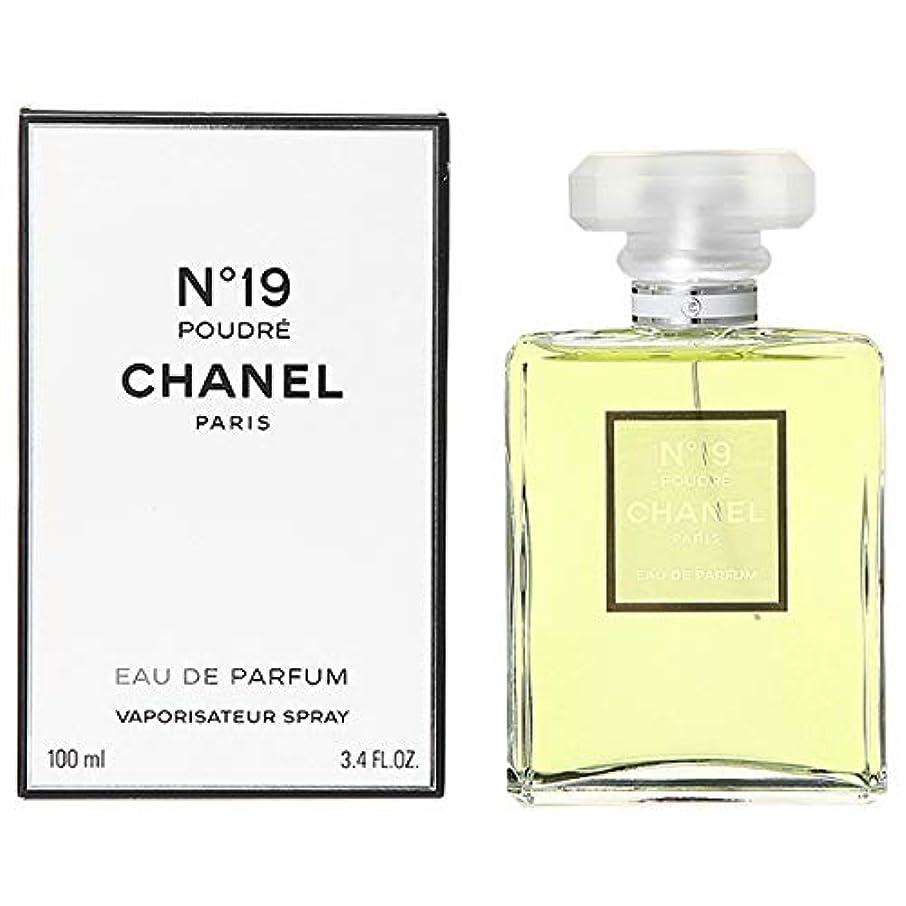 ブランク化学薬品公然とシャネル CHANEL No.19 プードレ オード パルファム EDP 100mL [並行輸入品]