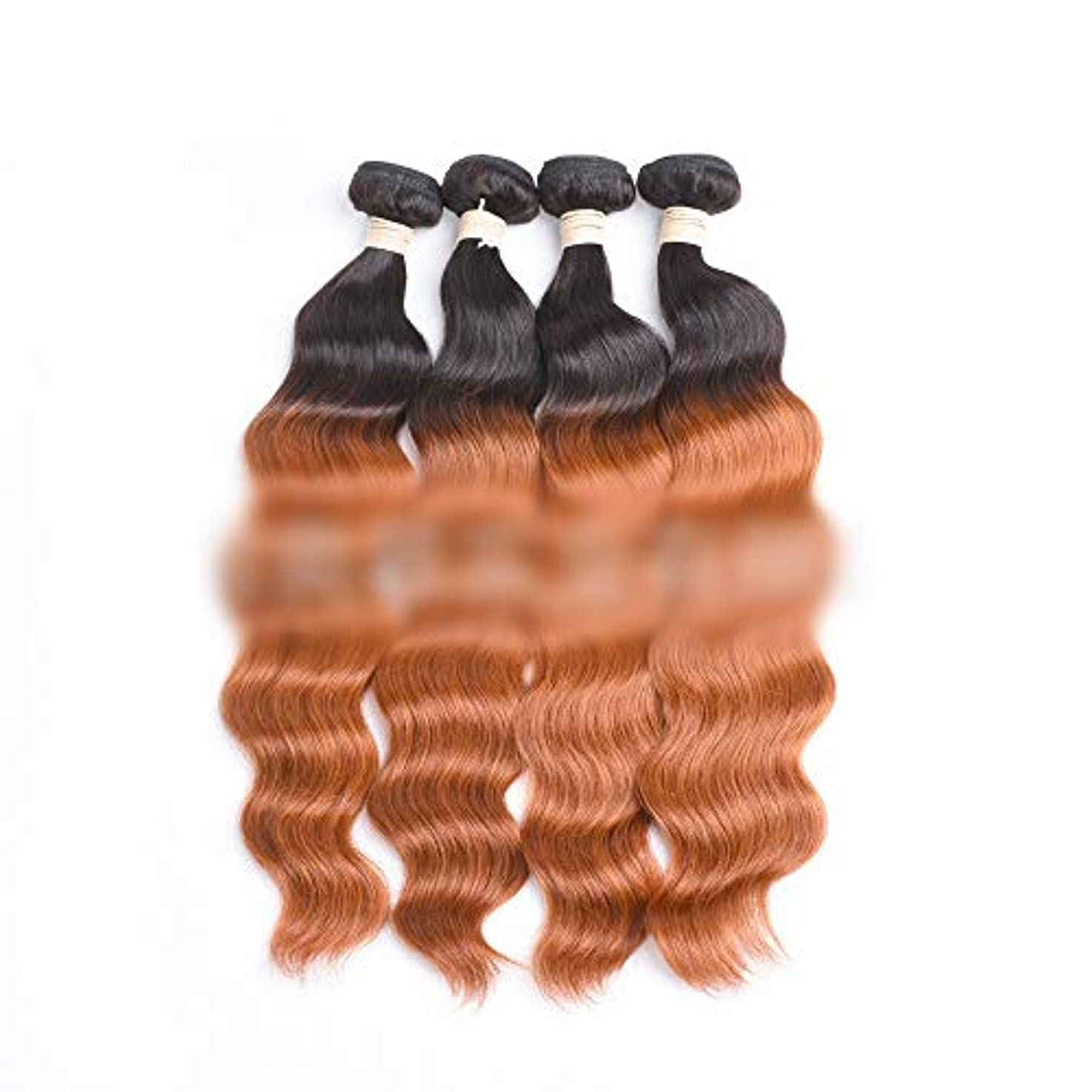 ヒョウ不適代名詞HOHYLLYA ブラジルのオーシャンウェーブヘア1バンドル未処理の人間の髪の毛の拡張子 - #30明るい茶色の色ロールプレイングかつら女性の自然なかつら (色 : ブラウン, サイズ : 14 inch)