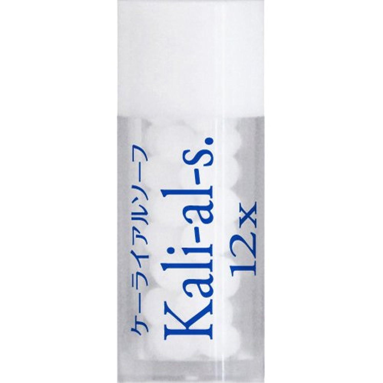 ホメオパシージャパンレメディー Kali-al-s.【バイタル17】 ケーライアルソーフ 12X