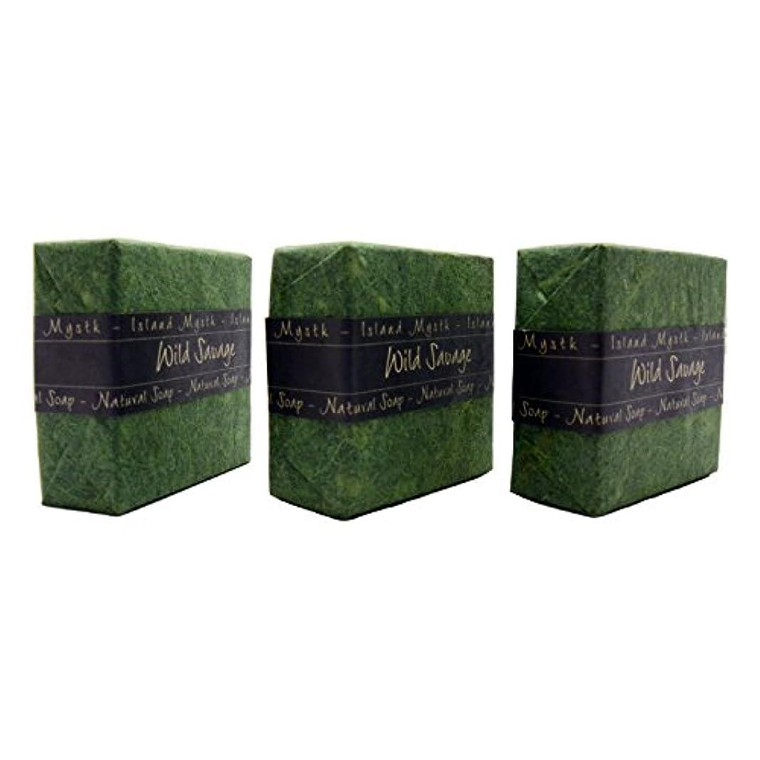 これらよろめくブロックアイランドミスティック ワイルドサーヴェージ 3個セット 115g×3 ココナッツ石鹸 バリ島 Island Mystk 天然素材100% 無添加 オーガニック