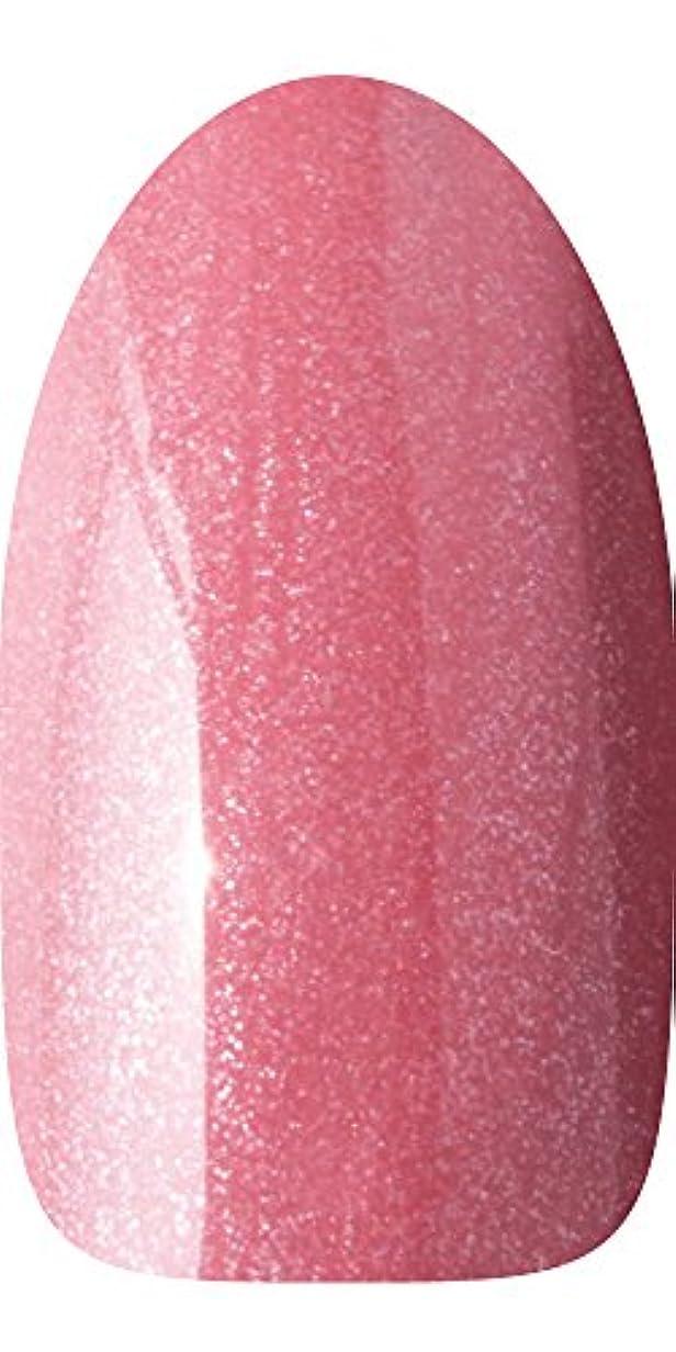 収容する目的アートsacra カラージェル No.055 マルゴー