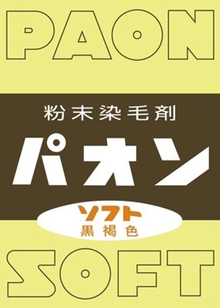 道路高架扱いやすい【5個セット】パオン ソフト(6g)×5個セット