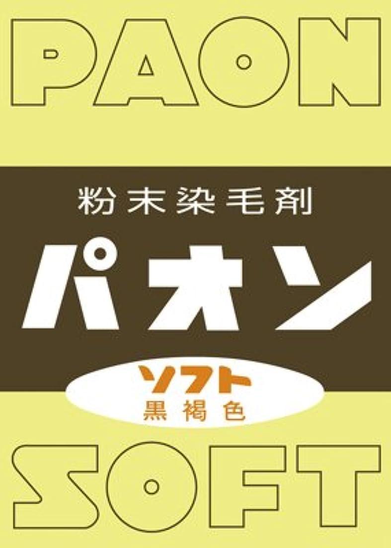 豆腐各ランドマーク粉末染毛剤 パオン 黒褐色 6g × 12個セット