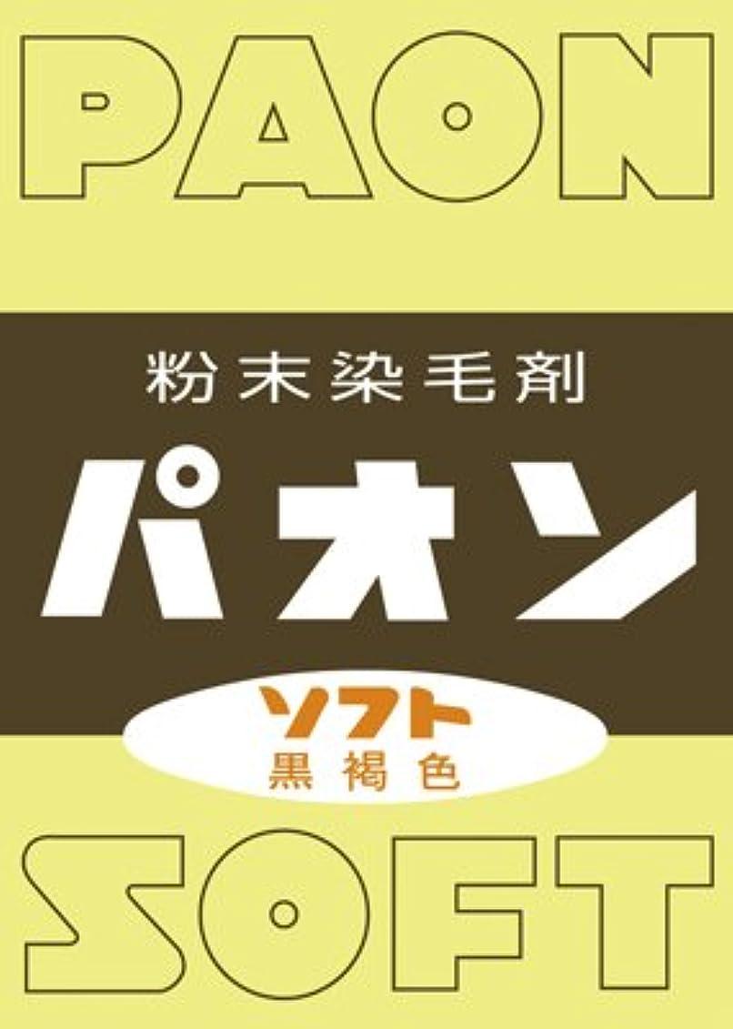トチの実の木空港餌粉末染毛剤 パオン 黒褐色 6g × 10個セット
