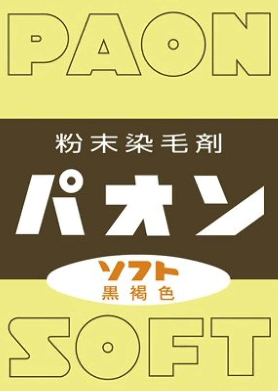 集中的な間二度【5個セット】パオン ソフト(6g)×5個セット