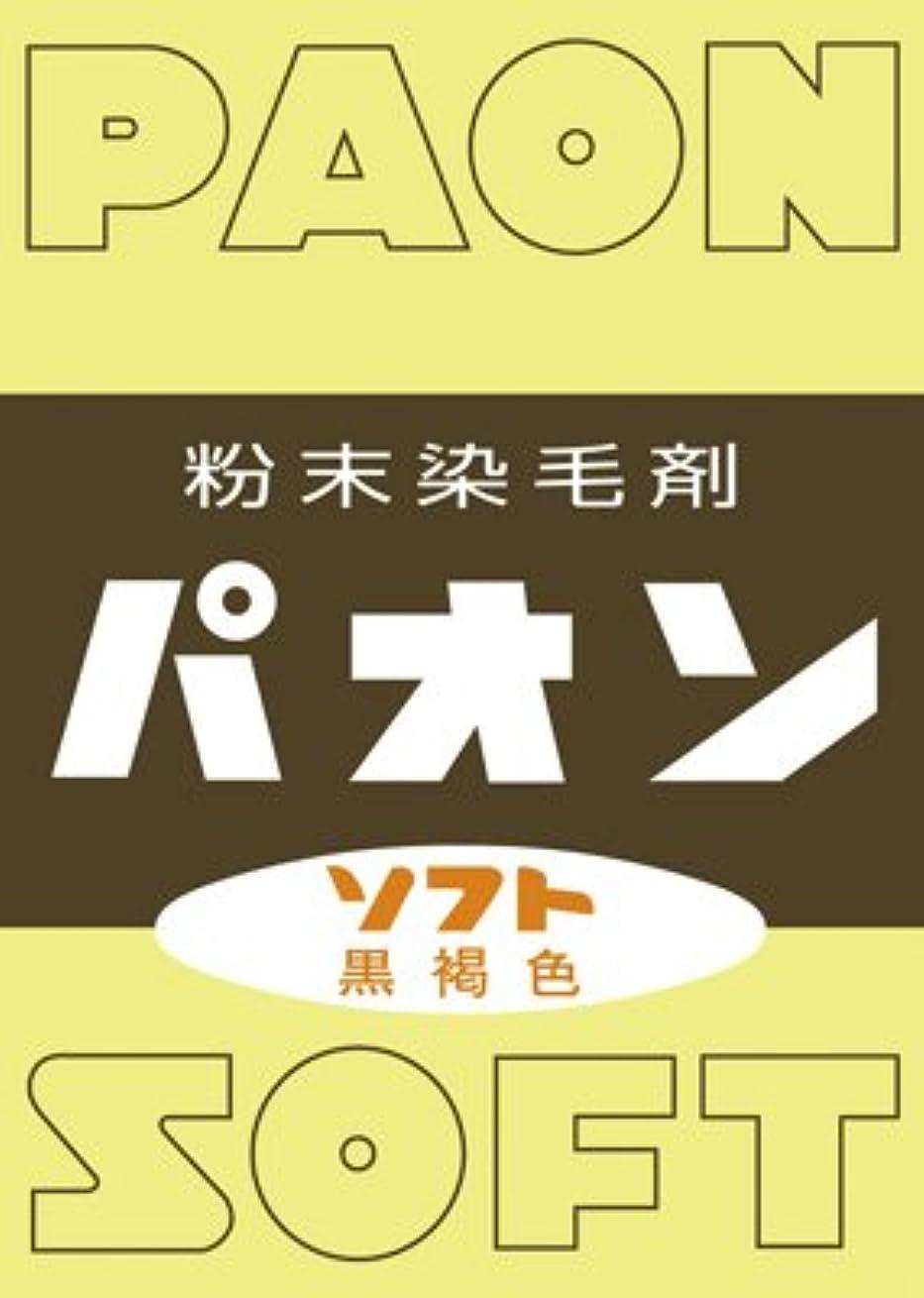 リーフレット援助する憂鬱な【10個セット】パオン ソフト(6g)×10個セット
