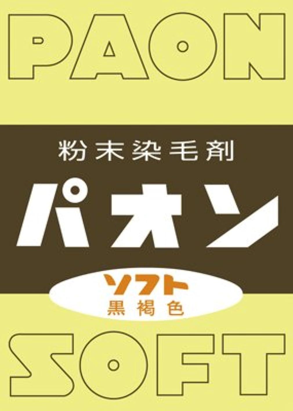 行うバルーン勇敢な粉末染毛剤 パオン 黒褐色 6g × 120個セット