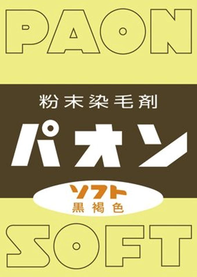 予測テント永久に【5個セット】パオン ソフト(6g)×5個セット