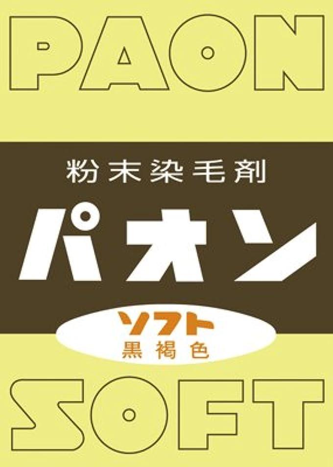 キャンディー蒸し器抑圧粉末染毛剤 パオン 黒褐色 6g × 120個セット