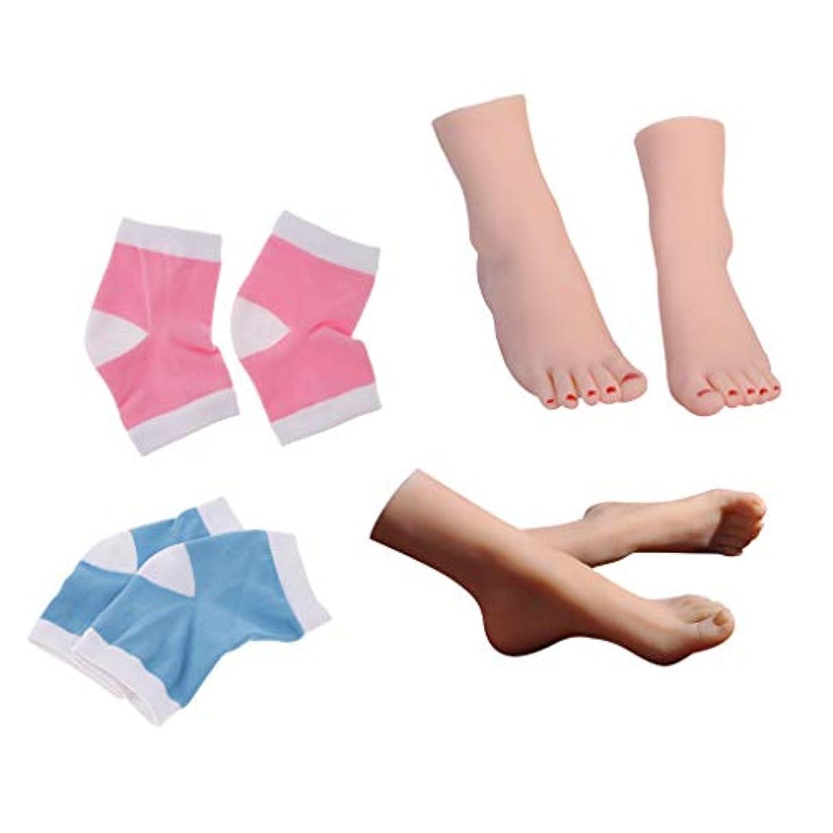 見分けるだますフィッティングSM SunniMix 2組マネキン 足モデル 女性+2組 足の袖 足用スリーブ 靴下 靴 足首 ディスプレイ