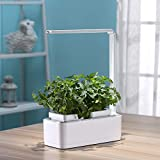 Indoor Herb Garden, Hydroponic System to Grow Fresh Herbs with Auto Sensor Grow Light and Reading Lamp, Great Family Gift and Kitchen Decor Accessory (Seeds not Included)
